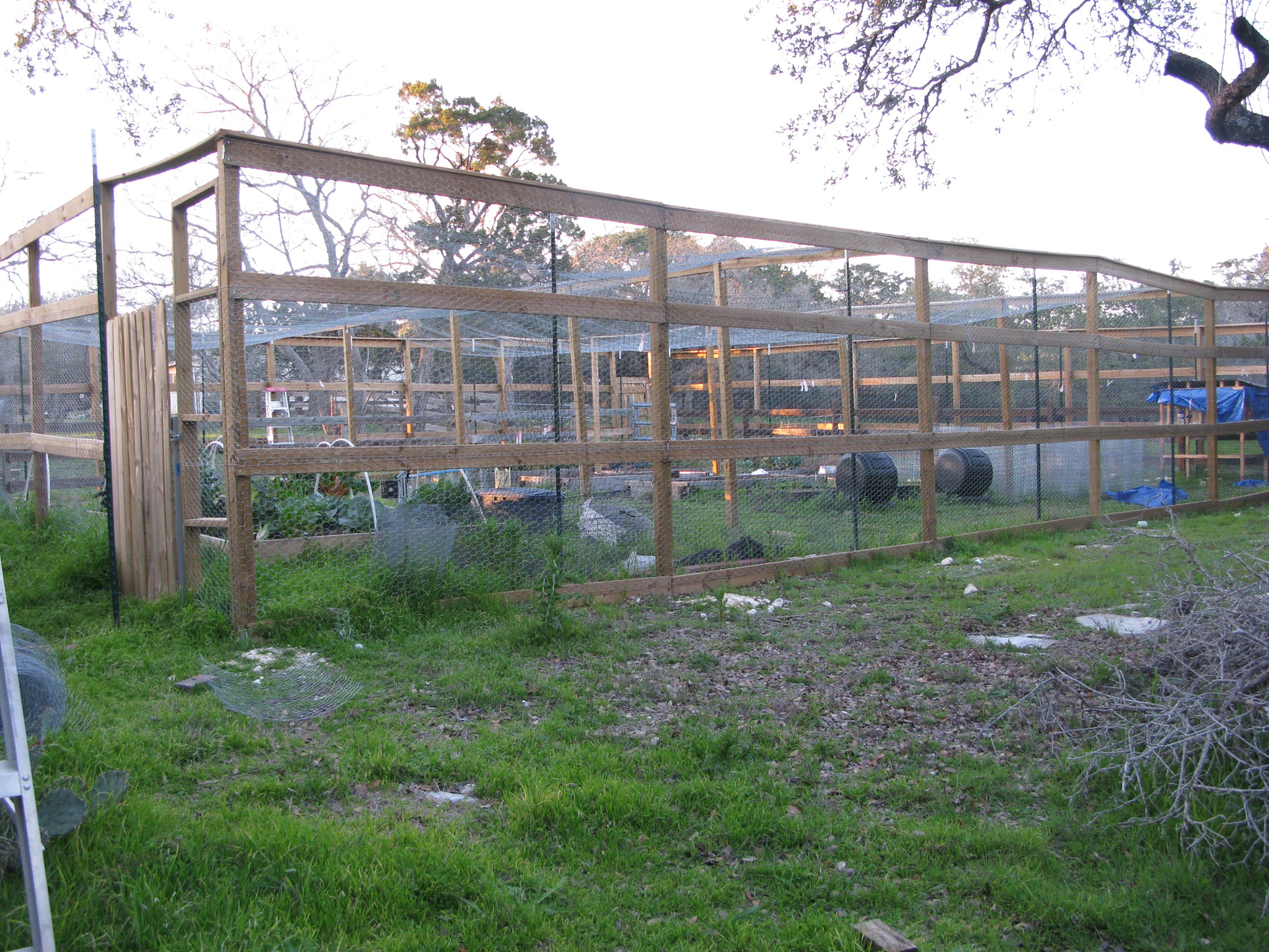 Garden Cage willsfamilyacres